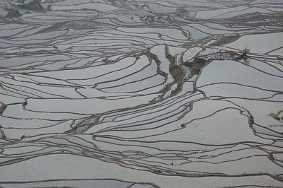 Hani Rice Terraces