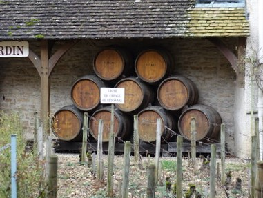 Climats, terroirs of Burgundy