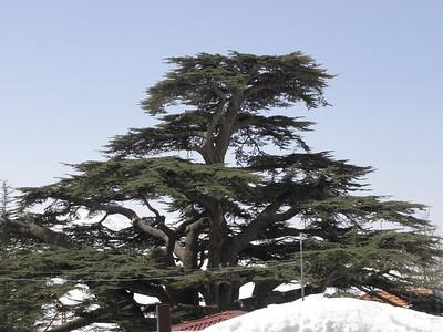 Qadisha Valley