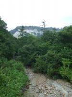 Shirakami-Sanchi by John Booth