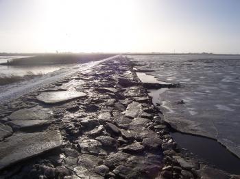 Wadden Sea by Ian Cade
