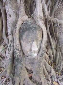 Ayutthaya by Ian Cade