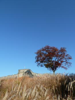 Hwaseong Fortress by Ian Cade