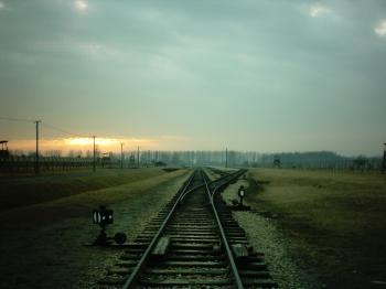 Auschwitz Birkenau by Ian Cade