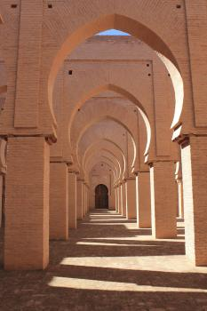 Mosquée de Tinmel (T) by Walter