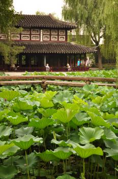 Classical Gardens of Suzhou by Frederik Dawson