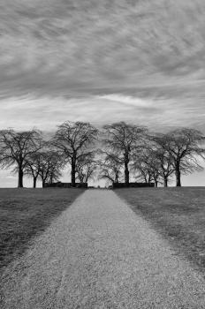 Skogskyrkogarden by Frederik Dawson