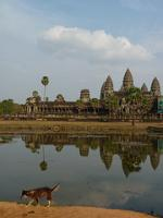 Angkor by Clyde