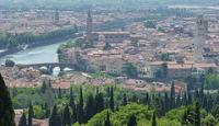 Verona by Clyde