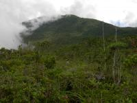 Mount Hamiguitan by Boj
