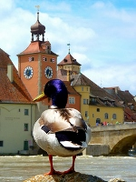 Regensburg by Clyde