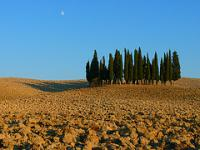 Val d'Orcia by Clyde