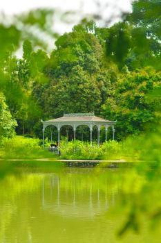 Singapore Botanic Gardens  by Frederik Dawson