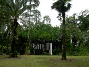 Singapore Botanic Gardens  by Boj