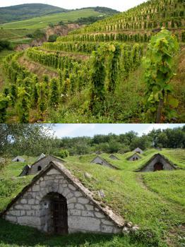 Tokaji Wine Region by Hubert Scharnagl