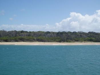 Fraser Island by Mirjam S.