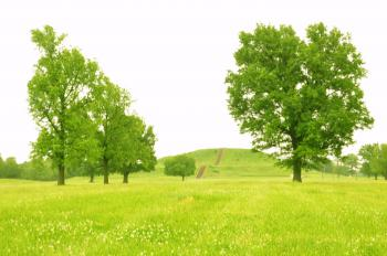 Cahokia Mounds by Frederik Dawson