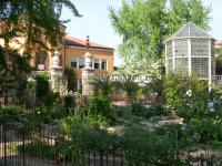 Botanical Garden, Padua by Graeme Ramshaw