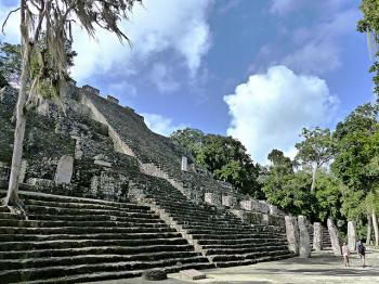 Calakmul by Clyde