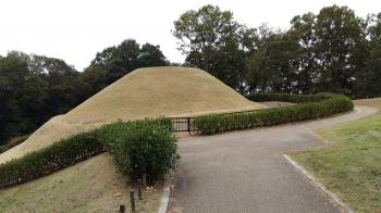 Asuka-Fujiwara : Archaeological sites of Japan's Ancient Capitals and Related Properties (T) by Nan Mungard