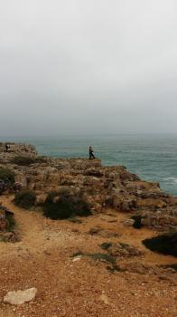 Southwest Coast (T) by Nan Mungard
