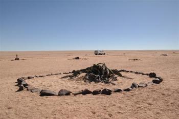 Welwitschia Plains (T) by Kbecq