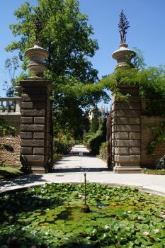 Botanical Garden, Padua by hubert