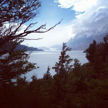 Torres del Paine and Bernardo O'Higgins National Parks, Region of Magallanes (T) by nan