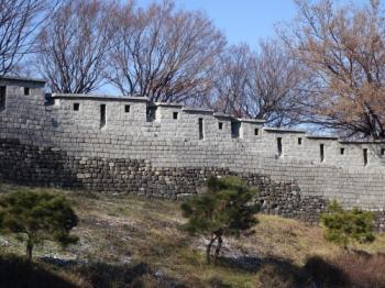 Seoul City Wall (T) by Els Slots