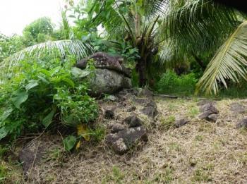 Tet el Bad (Stone Coffin) (T) by Els Slots