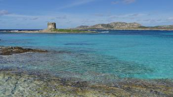 Island of Asinara (T) by Clyde