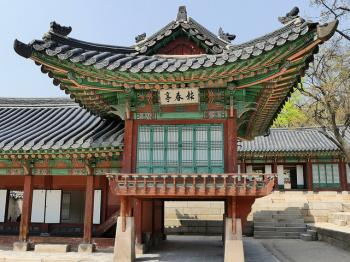 Changdeokgung Palace Complex by Clyde