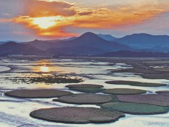 Southwestern Coast Tidal Flats (T) by Clyde