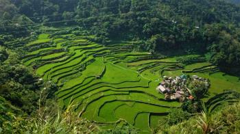 Rice Terraces of the Philippine Cordilleras by Riccardo Quaranta