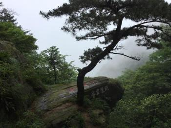 Lushan National Park by Stanislaw Warwas