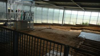 Neolithic Flint Mines at Spiennes by nan