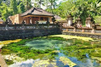 Bali Subak system by Frederik Dawson