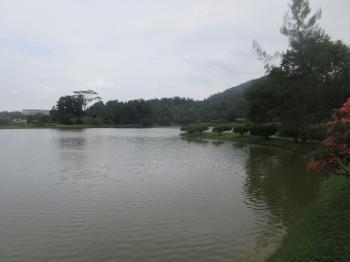 FRIM Selangor Forest Park (T) by Wojciech Fedoruk