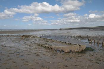Wadden Sea by Kbecq