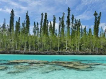 Lagoons of New Caledonia by Clyde