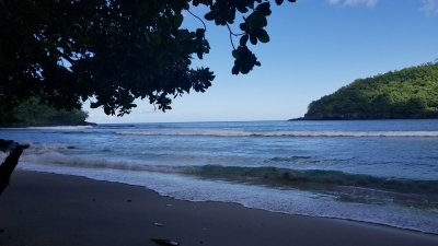 Marine Protected Areas of American Samoa (T) by Zoe Sheng
