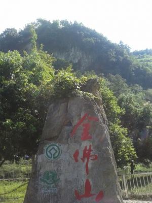 Jinfushan Scenic Spot (T) by Zoe Sheng