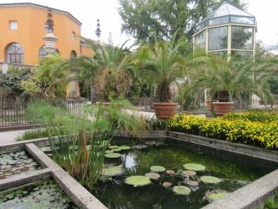 Botanical Garden, Padua by Jay T