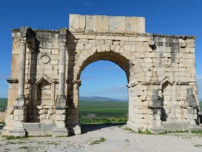 Volubilis by Clyde