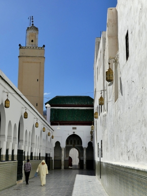 Moulay Idriss Zerhoun (T) by Clyde
