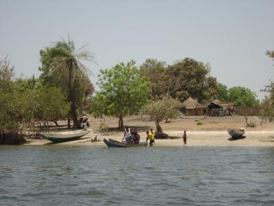 Saloum Delta