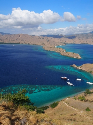 Komodo National Park by Alexander Parsons