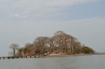 Kunta Kinteh Island by Michael Novins