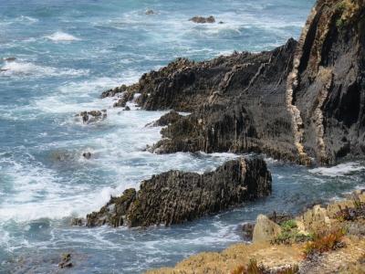 Southwest Coast (T) by Kyle Magnuson