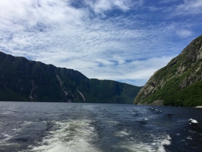 Gros Morne National Park by Craig Harder